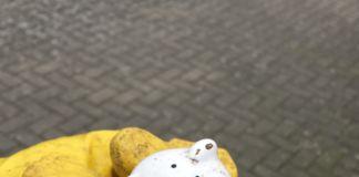 schenefeld-räumt-auf-profilbild